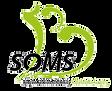 logo besoms vert #A2C51E transp.png