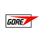 GORE2.png