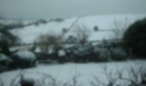 garden,snow.JPG