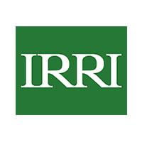 IRRI.jpg