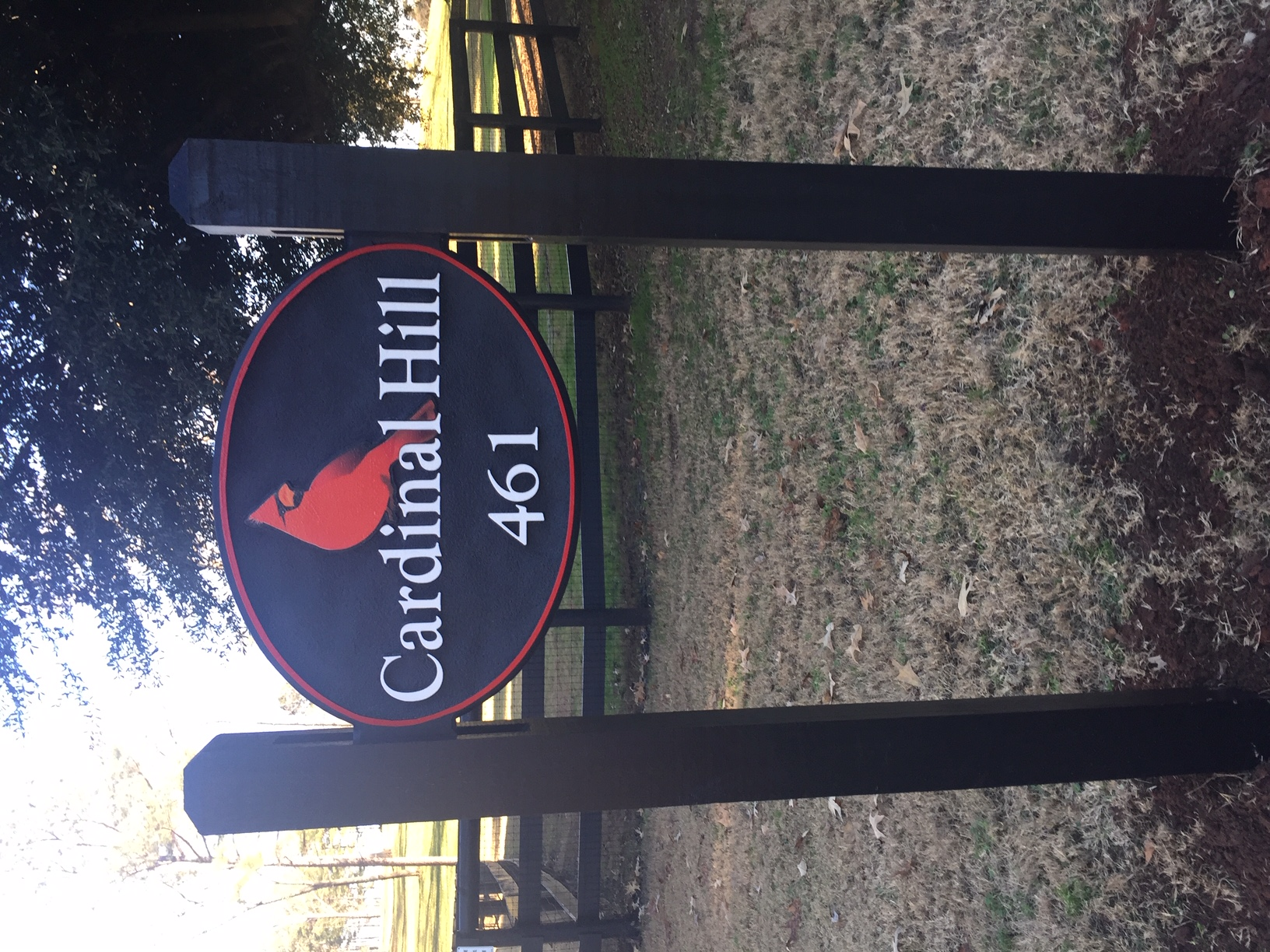 Cardinal Hill