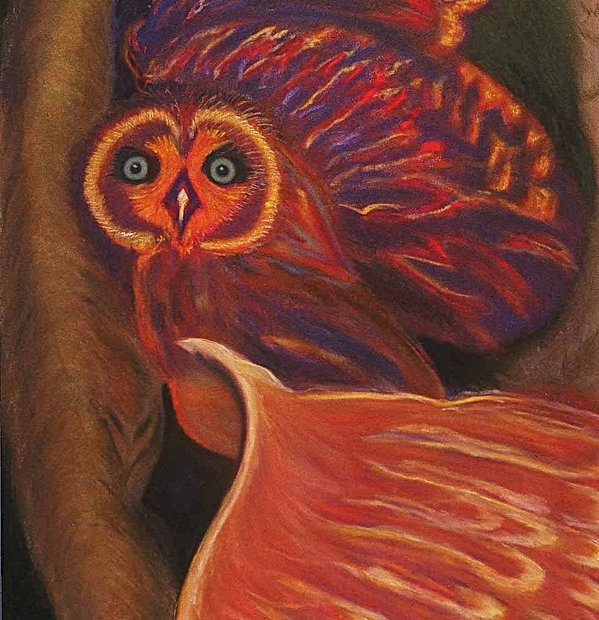 """Owl in a Tree"" soft pastel on paper, wood framed 38"" h x 30""w $1,200."