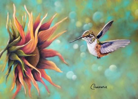 hummingbirdfulljpg