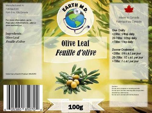 Earth M.D.Olive Leaf Powder