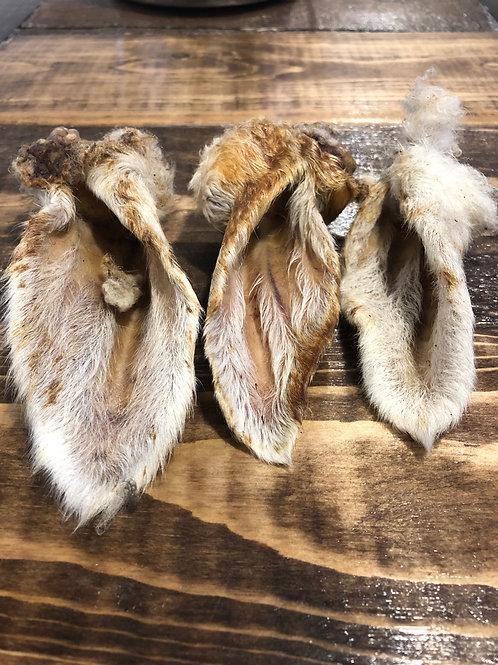 Lamb Ears