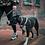 Thumbnail: Woof Concept Leash ($22.99-$34.99)