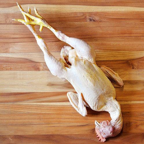 Whole Chicken (frozen)