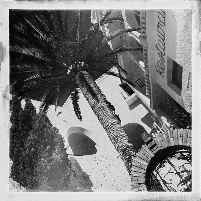 Andaluzia Diary-0492