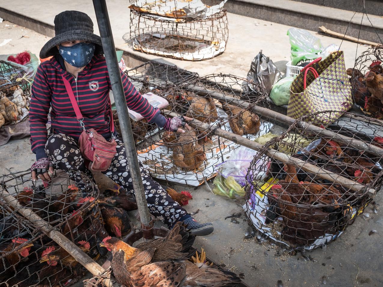 Vietnam_2016-0418