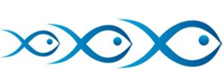 fishbudget_logo2_edited.jpg