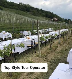Pranzo nelle vigne con camminata campagnola Tutte Le domeniche da Maggio a Settembreevento garan