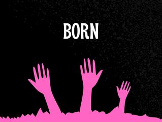 """SSD project """"Born""""la canzone ambita dai registi"""