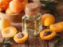 appricon.jpg