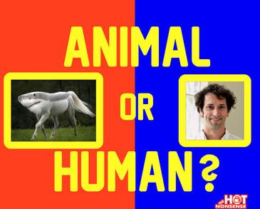 Animal or Human.jpg