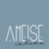 LOGO IN HOMEAMEISE.png