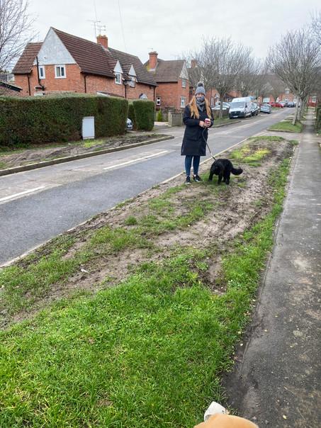 Cosham & Wymering grass verge problem