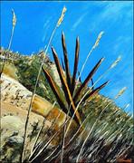 Piquets sur dune