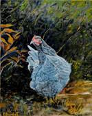 Poule à l'orée du bois