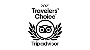 TripAdvisor-1_edited.png
