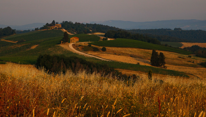 The rolling golden hills of Tuscany