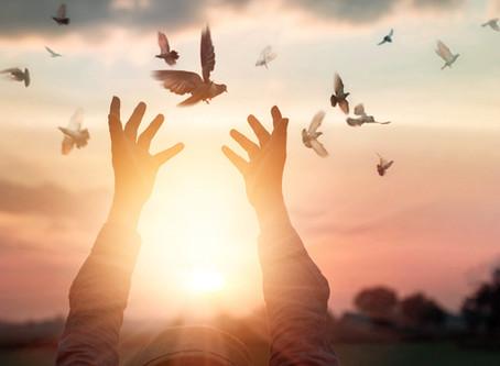 Io ti chiedo Perdono | Tratto da Biologia della Gentilezza di Daniel Lumera