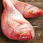 caribbean-red-altamar.jpg