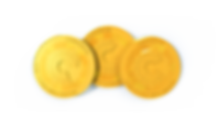 coins_final_1 copy.png