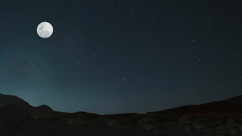 moon_back003.jpg