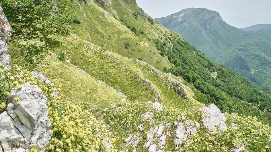 Le Porchie - Monti Gemelli