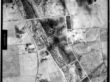 State of Change: Habitat Disturbance in Glen Helen