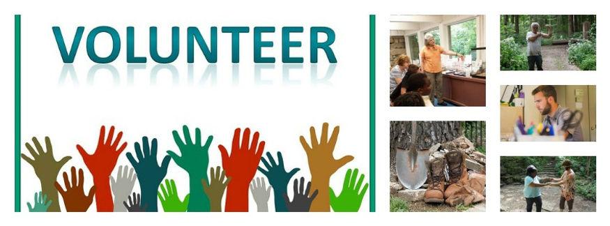 Volunteer at the Glen