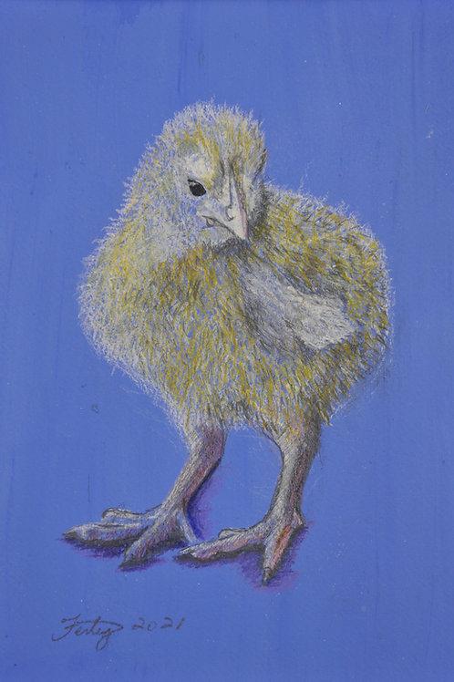 Royal Blue Chick Drawing