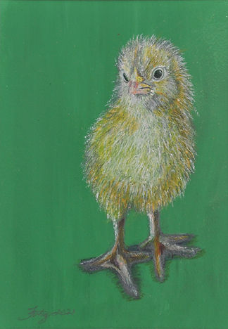 spring chick original drawing Carrie Fer