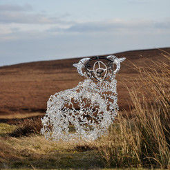 Perthshire Sheep. Photo: the artist. Commissioned by and in the permanent collection of Perth Museum and Art Gallery. Perth, Scotland