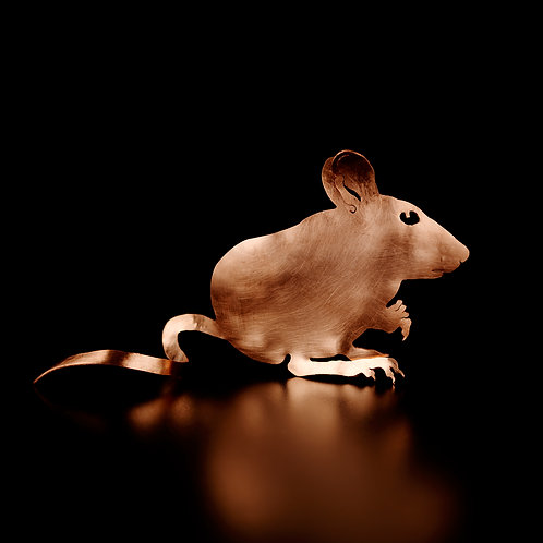 Steadfast Mouse