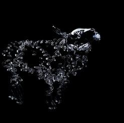 Lamb. Photo: Shannon Tofts.