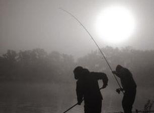 two-boys-netting.jpg