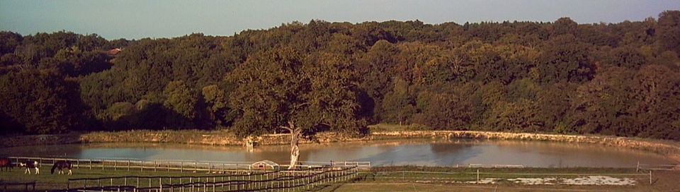 lake pics from balcon 003_edited.jpg