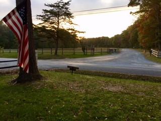 OMC Entrance Photo w flag.jpg