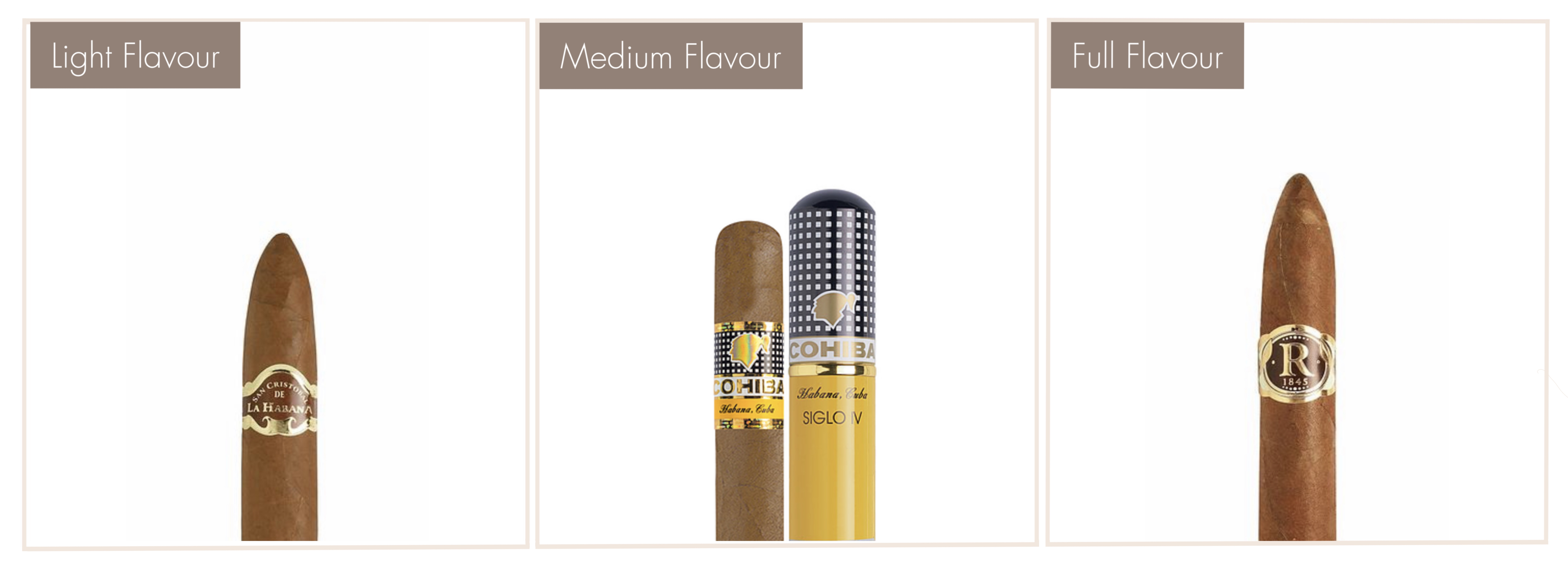Online store - Robusto House - Cuban cigars - cigar strength