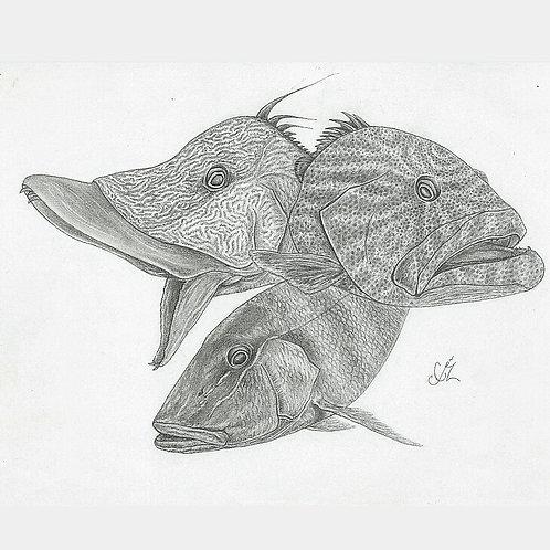 Reef Rebels Print