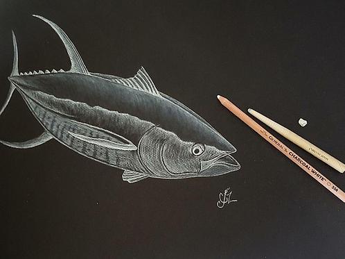 Yellowfin Tuna Print