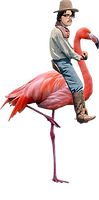flamingo for website.png