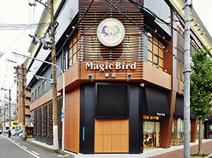 Magic Bird 東成.jpg