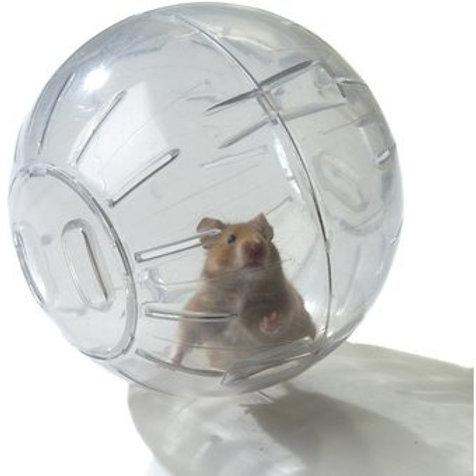 Bola esfera de Ejercicio para Hamster de 17 cm de diámetro