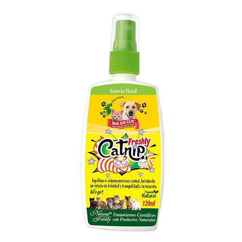 Catnip ayuda a mantener tu mascota relajada x120 ml