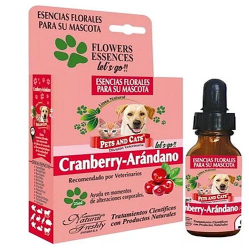 Esencia de cranberry-Arándano x 25 ml