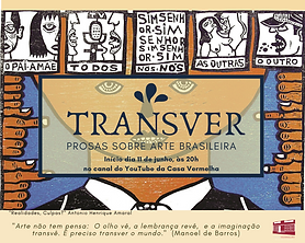 Projeto Transver.png