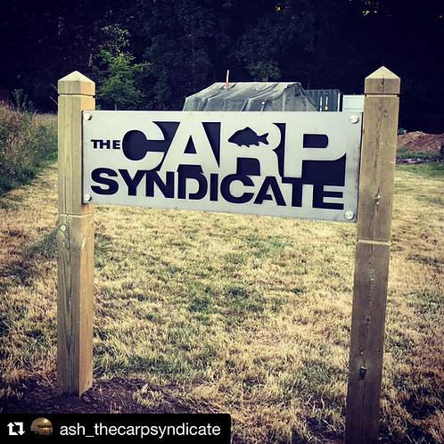 The Carp Syndicate