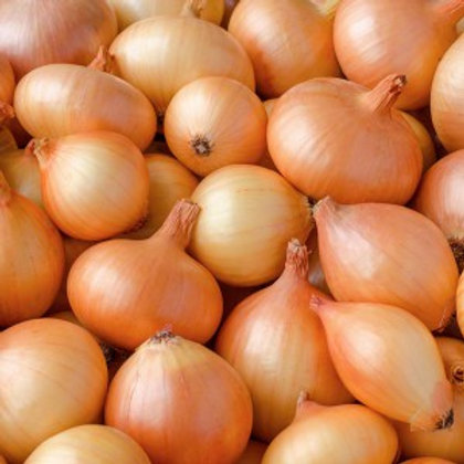 Organic Brown Onions - 1kg